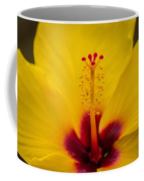 Red Coffee Mug featuring the photograph Tropical Reach by Bill Pevlor