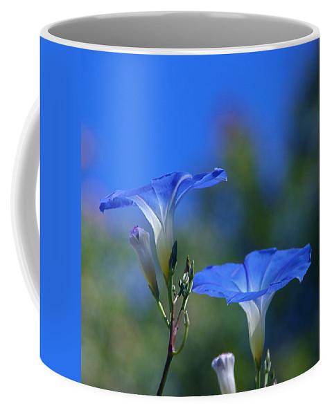 morning Glories Coffee Mug featuring the photograph True Blue by Byron Varvarigos