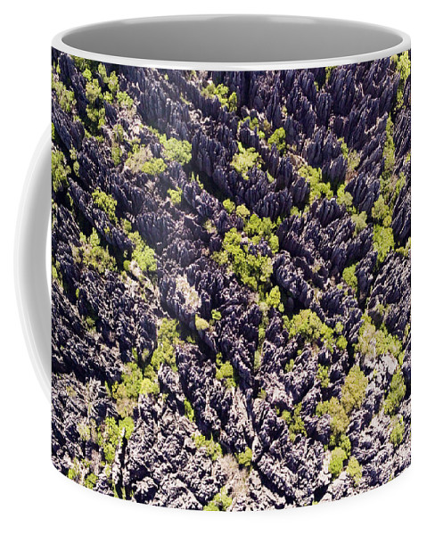 Landscape Coffee Mug featuring the photograph Tsingys, Karst Formations In The Tsingy by Michael Fay