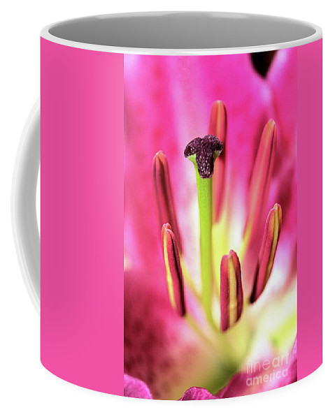 Star Gazer Lily Coffee Mug featuring the photograph Tthe Heart Of A Star Gazer by Victor K