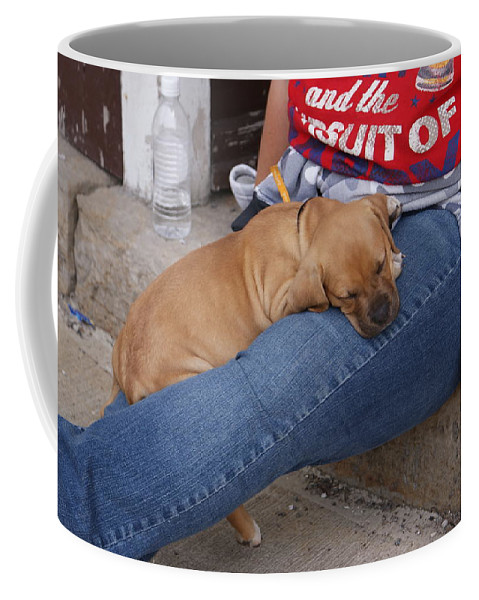 Dog Coffee Mug featuring the photograph Tuckered Out by Jean Haynes