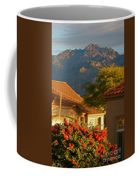 Mountains Coffee Mug featuring the photograph Tucson Beauty by Nadine Rippelmeyer