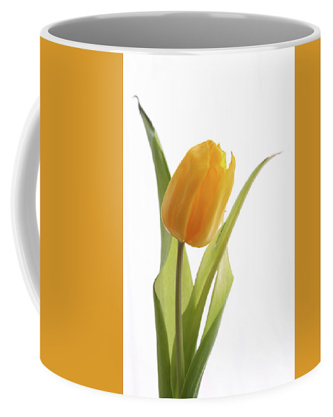 Tulip Coffee Mug featuring the photograph Tulip 272 by Marie Leslie