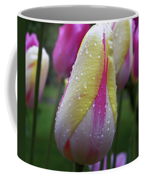 Tulip Close-up Coffee Mug featuring the photograph Tulip close-up 2 by Manuela Constantin