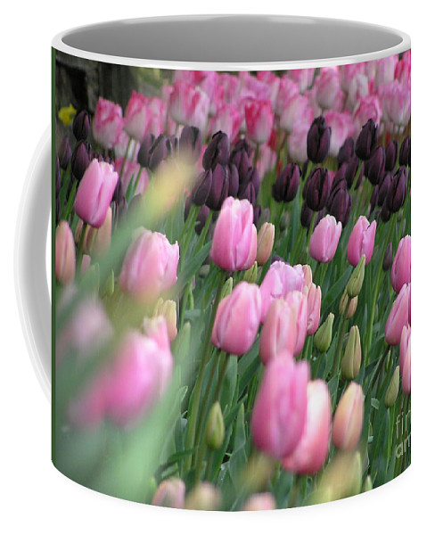 Tulips Coffee Mug featuring the photograph Tulip Dreams by Louise Magno