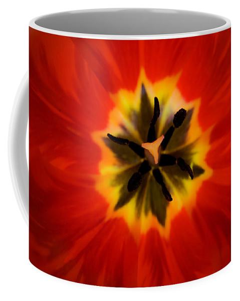 Tulip Coffee Mug featuring the photograph Tulip Explosion Kaleidoscope by Teresa Mucha