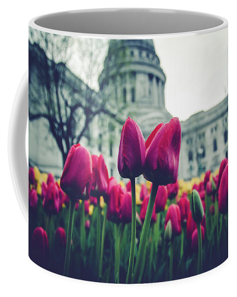 Tulips Coffee Mug featuring the photograph Tulip In Bloom by Rockland Filmworks