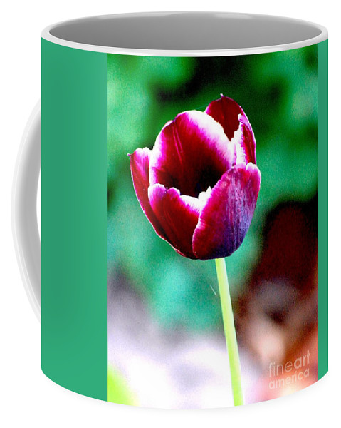 Digital Photo Coffee Mug featuring the photograph Tulip Me by David Lane