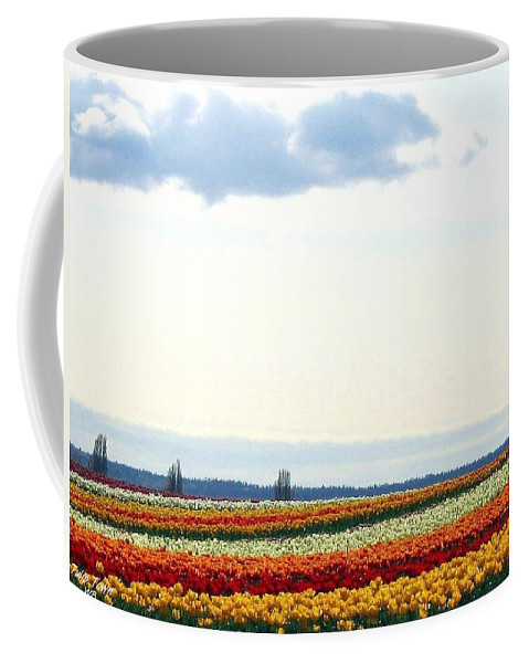 Agriculture Coffee Mug featuring the photograph Tulip Town 13 by Will Borden