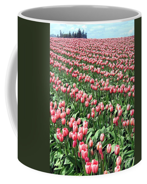 Agriculture Coffee Mug featuring the photograph Tulip Town 14 by Will Borden