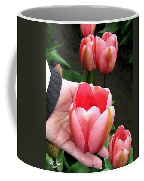 Agriculture Coffee Mug featuring the photograph Tulip Town 15 by Will Borden