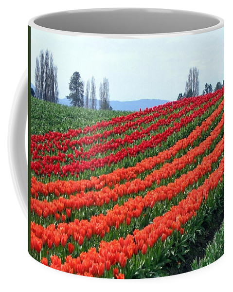 Agriculture Coffee Mug featuring the photograph Tulip Town 18 by Will Borden