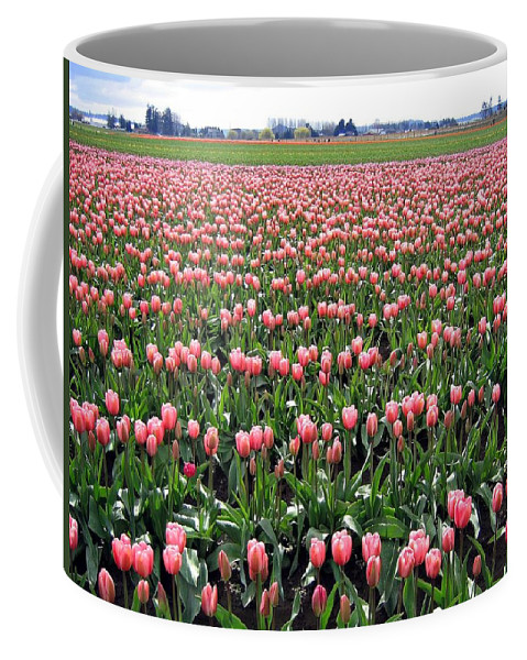 Agriculture Coffee Mug featuring the photograph Tulip Town 5 by Will Borden