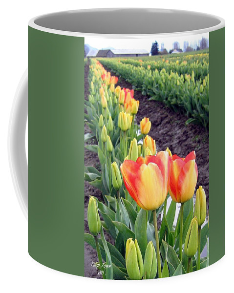 Agriculture Coffee Mug featuring the photograph Tulip Town 6 by Will Borden
