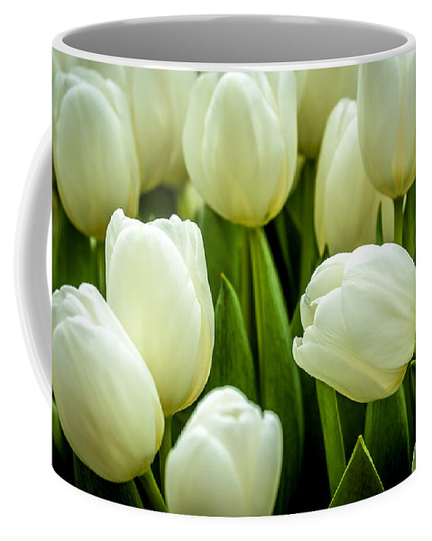 Agriculture Coffee Mug featuring the photograph Tulips 4 by Jijo George
