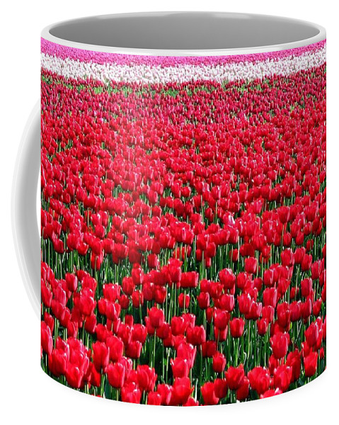 Tulips Coffee Mug featuring the photograph Tulips By The Million by Will Borden