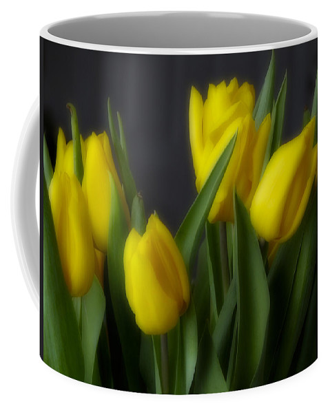 Flower Coffee Mug featuring the photograph Tulips In The Kitchen by Ches Black