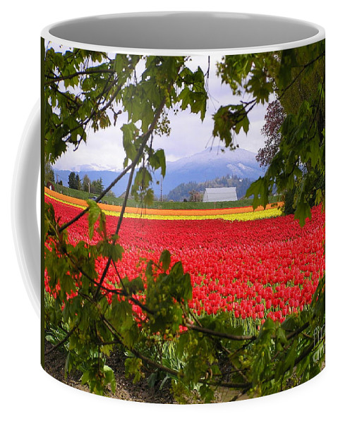 Tulip Coffee Mug featuring the photograph Tulips Secret Window by Louise Magno