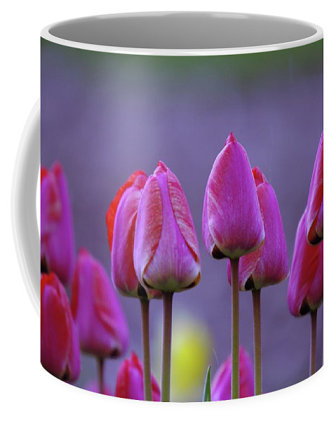 Tulips Coffee Mug featuring the photograph Tullips by Jeff Swan