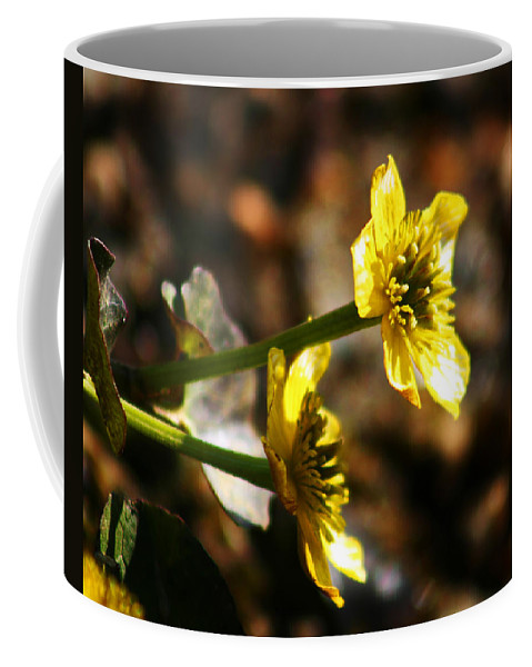Wild Flowers Coffee Mug featuring the photograph Tundra Rose by Anthony Jones