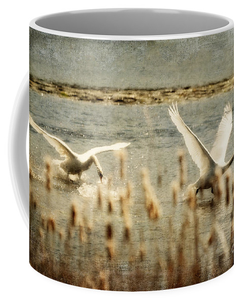 Swans Coffee Mug featuring the photograph Turf Wars by Lois Bryan