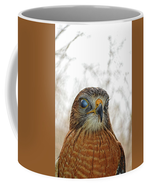 Red Coffee Mug featuring the photograph Turn A Blind Eye by Jason Bohannon