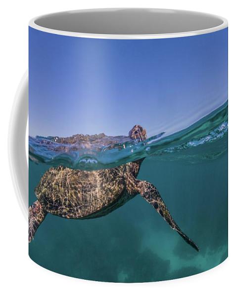 Ocean Coffee Mug featuring the photograph Turtle Breath by David Palfrey