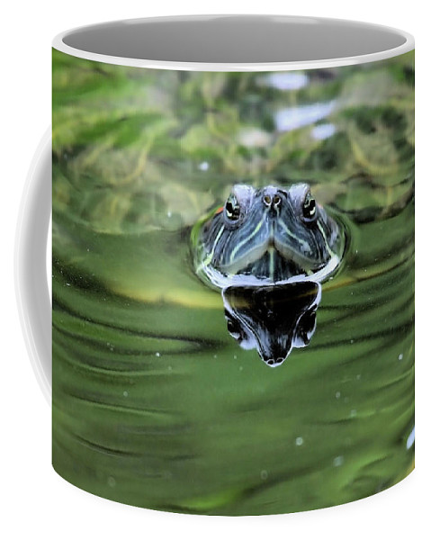 Turtle Coffee Mug featuring the photograph Turtle Head by Karol Livote