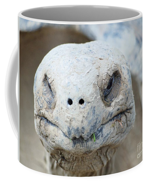 Turtle Coffee Mug featuring the photograph Turtle Smile by Jennifer Craft