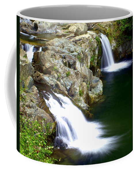 Waterfalls Coffee Mug featuring the photograph Twin Falls 3 by Marty Koch