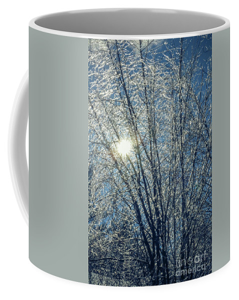 Ice Coffee Mug featuring the photograph Twinkles by Claudia M Photography