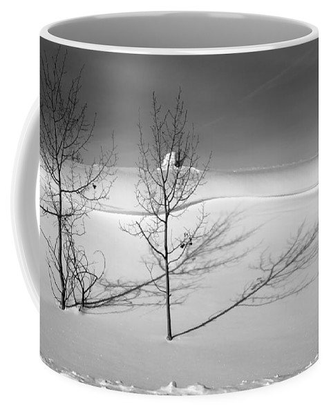 Nature Coffee Mug featuring the photograph Twins by Skip Hunt