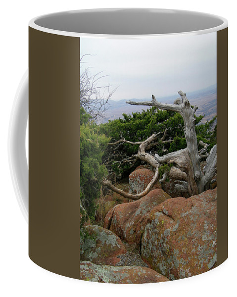 Wichita Mountains Coffee Mug featuring the photograph Twisted View by Gale Cochran-Smith