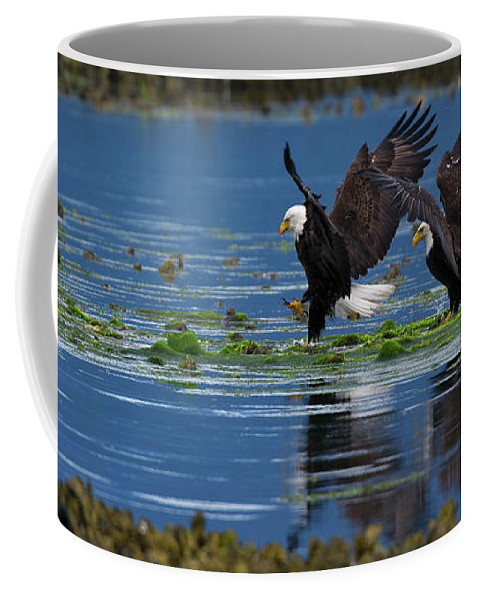Hood Coffee Mug featuring the photograph Two American Bald Eagle Touching Down At Low Tide by Gary Langley