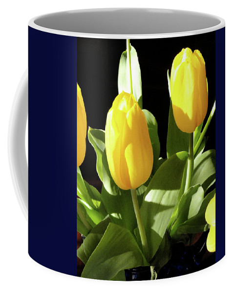 Yellow Coffee Mug featuring the photograph Two And A Half by Shannon Grissom