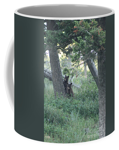 Two Coffee Mug featuring the photograph Two Bear Cubs by Mary Mikawoz