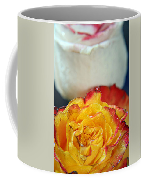 Rose Coffee Mug featuring the photograph Two Beautiful Roses by Lali Kacharava