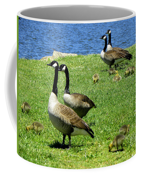 Geese Coffee Mug featuring the photograph Two By Two by Sandi OReilly