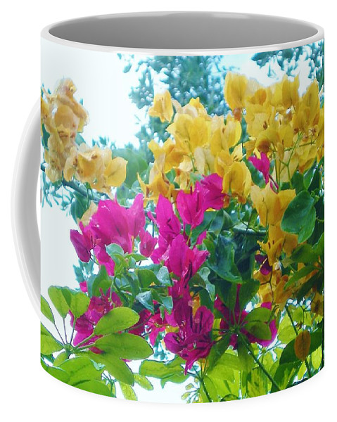 Flowers Coffee Mug featuring the photograph Two Color Flowers by Graciela Castro