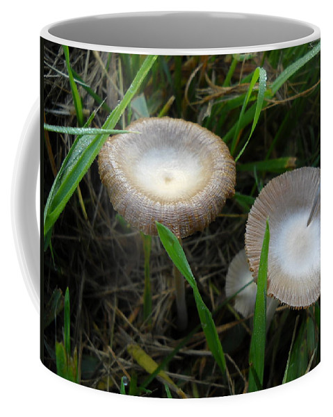 Mushrooms Coffee Mug featuring the photograph Two Mushrooms In Grass by Kent Lorentzen