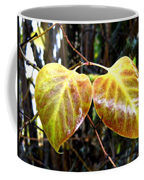 Autumn Coffee Mug featuring the photograph Two Of A Kind by Will Borden