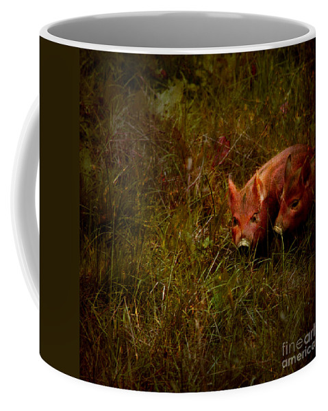 Piglets Coffee Mug featuring the photograph Two Piglets by Angel Ciesniarska