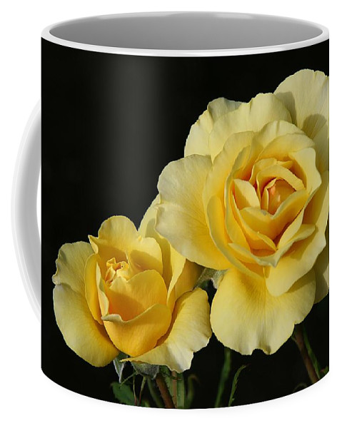 Rose Coffee Mug featuring the photograph Two Roses by Winston Rockwell