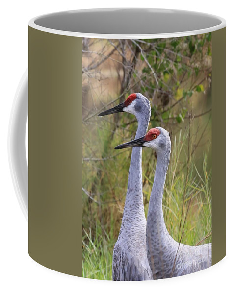 Sandhill Cranes Coffee Mug featuring the photograph Two Sandhills In Green by Carol Groenen