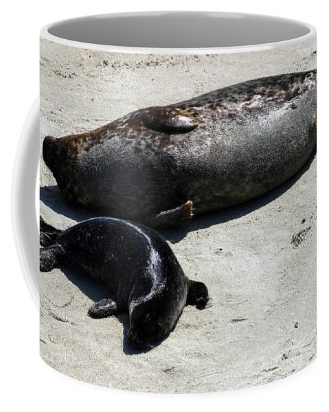 Seal Coffee Mug featuring the photograph Two Seals by Anthony Jones