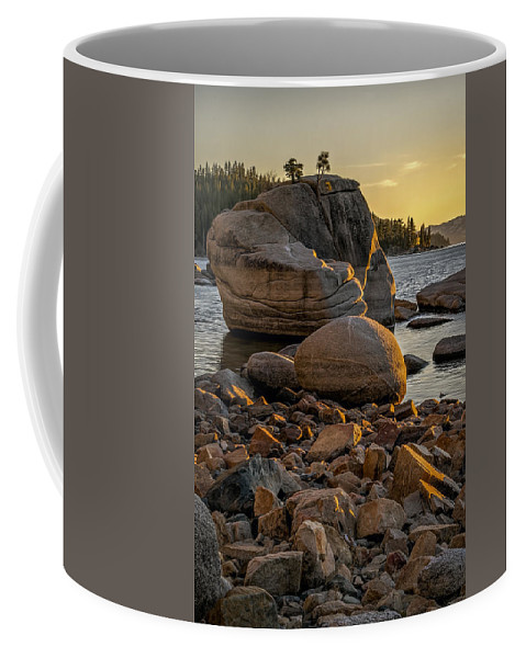 Background Coffee Mug featuring the photograph Two Small Trees by Maria Coulson