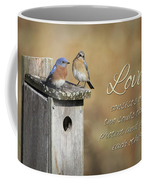 Blue Coffee Mug featuring the photograph Two Souls by Lori Deiter