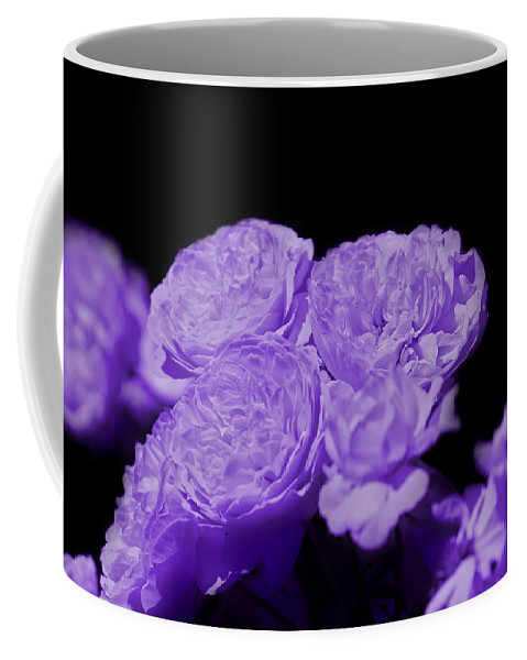 """Ultraviolet Purple Cabbage Roses On Black"" Fine Art Photography on Hot Cocoa Mug"