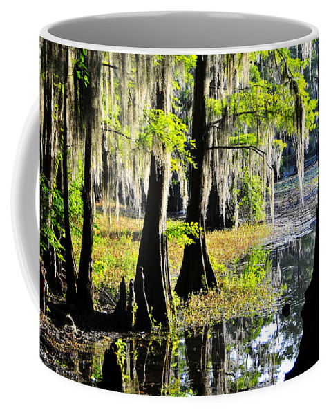 Skip Hunt Coffee Mug featuring the photograph Uncertain by Skip Hunt