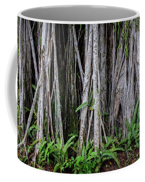Tree Coffee Mug featuring the photograph Under The Banyan Tree by Artisanal Photo
